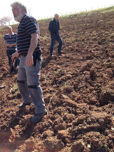Mit Muschelkalk durchsetzter Lehm- und Tonboden