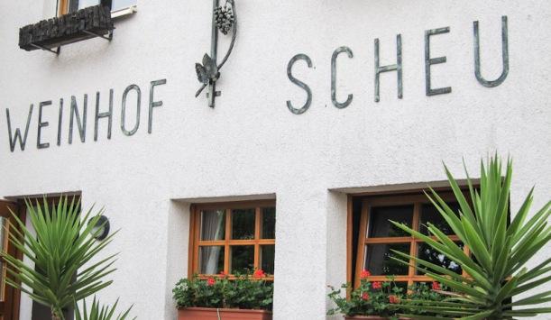 Weinhof Scheu. Weinbergswanderung