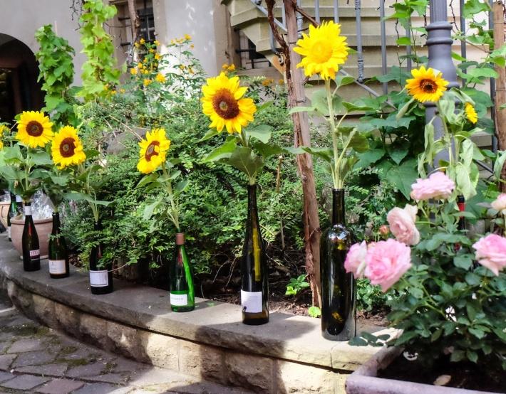 Sonnenblumen © LL kingscreek.de
