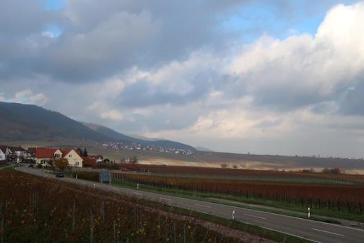 Aussicht von der Vinothek Weinhaus Messmer
